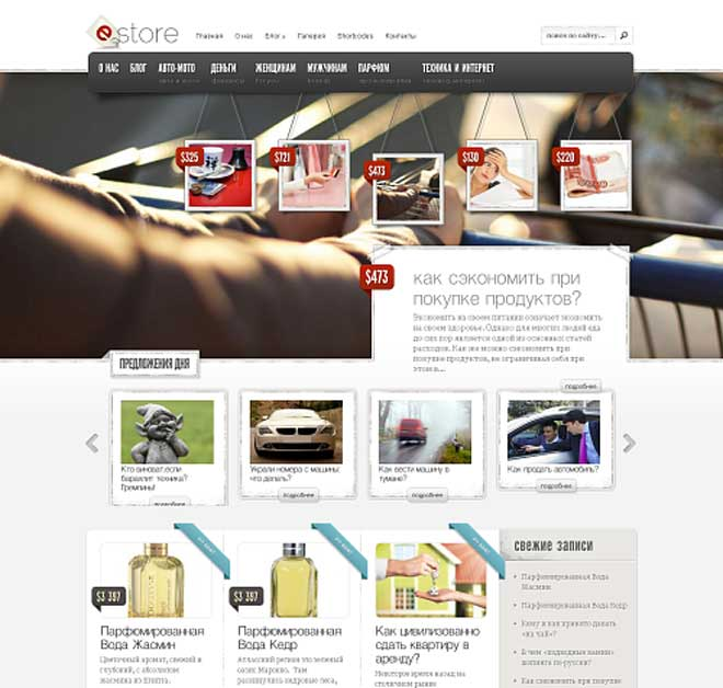 estore_elegantthemes_screenshot-(1)