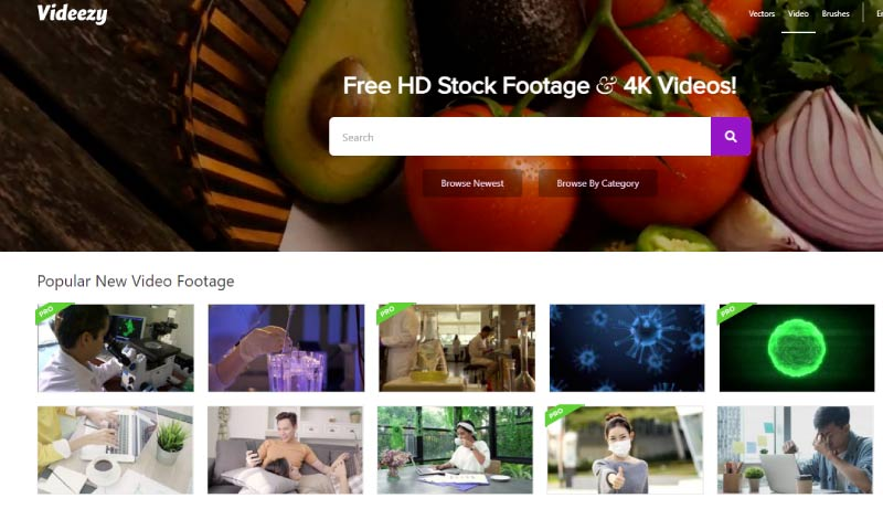 videezy-сервис